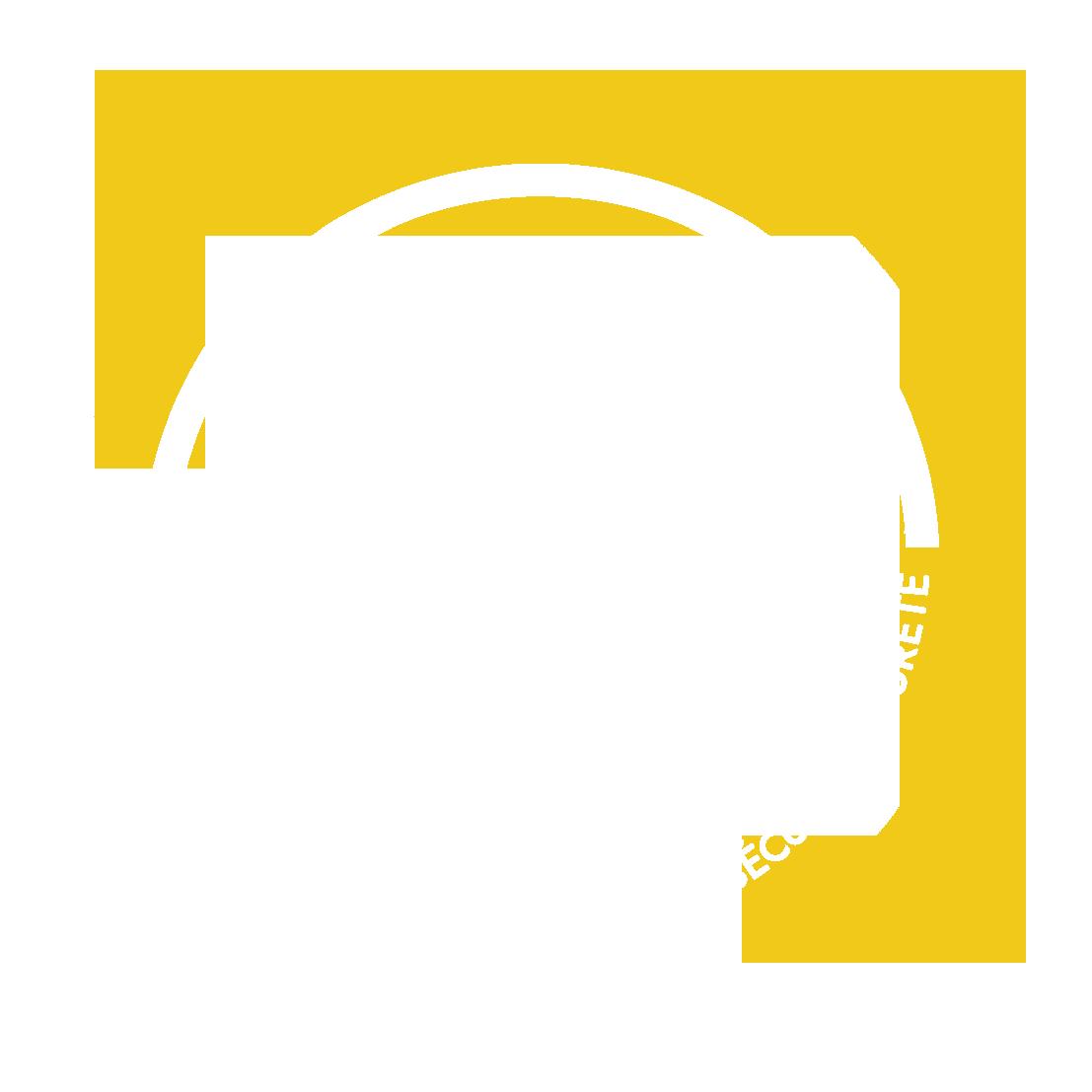 ACISS Société spécialisée dans le domaine de la sécurité et de la sûreté